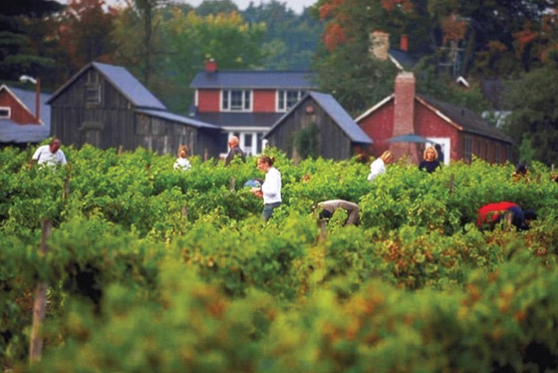 Contest Win A Weekend Getaway In Quebec 39 S Wine Region