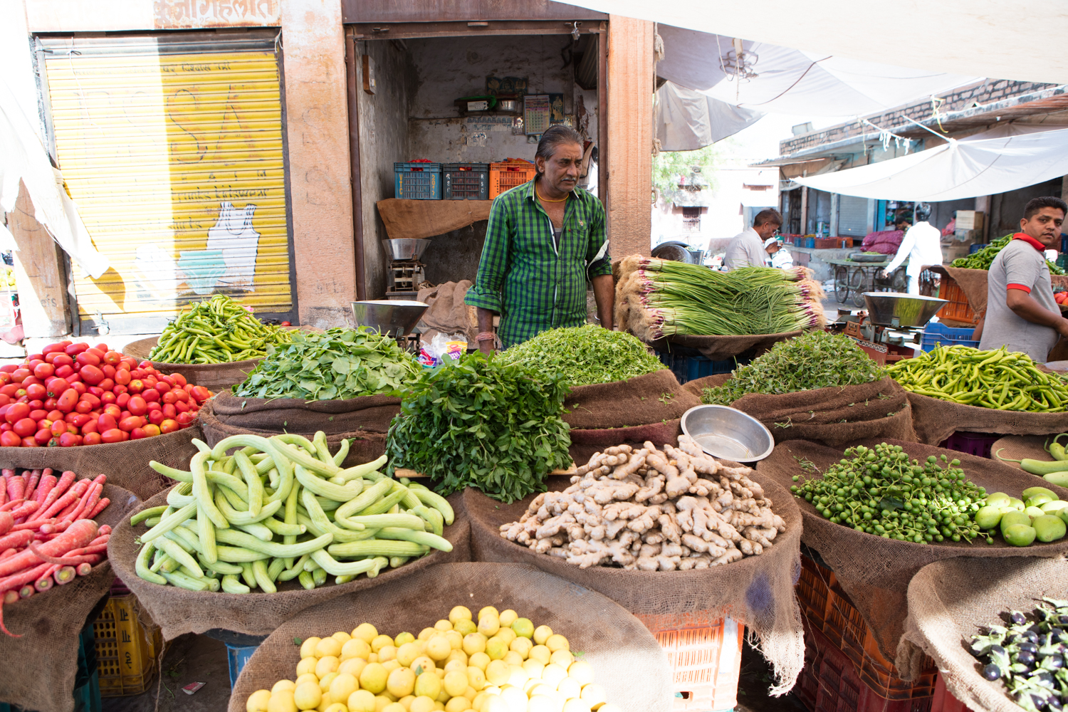 Modern India Aly Velji Market Fresh
